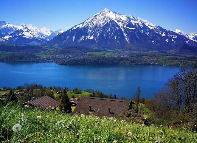 Splendid Views of Swiss Alps&Lakes Bed&Breakfast