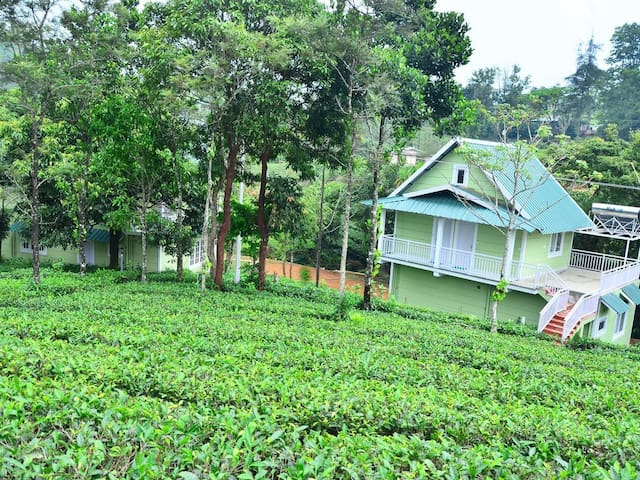 Lavender vagamon Deluxe room in a Plantation stay