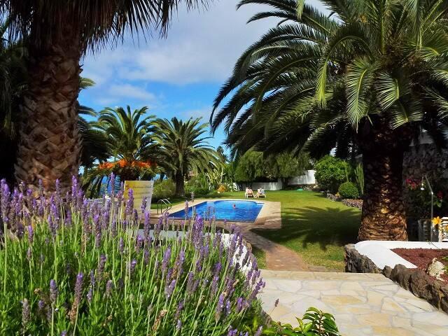 Penthouse at Residencial Rolando- Tenerife - La Matanza de Acentejo - Apartament