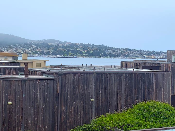 Ocean View Condo Steps from Del Monte Beach