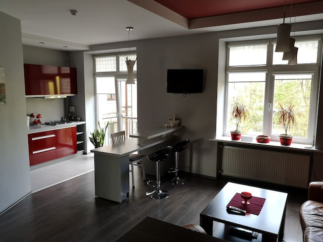 Apartment in Kaunas city center near ŽalgirioArena