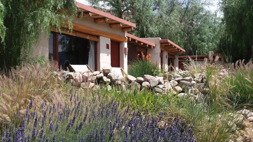 Posada en Tilcara - Tilcara - Hostel