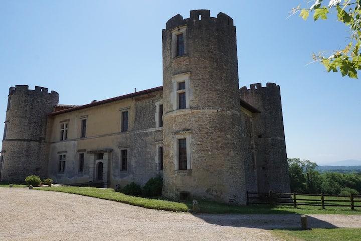 Château avec vue sur Pyrénées proche plages