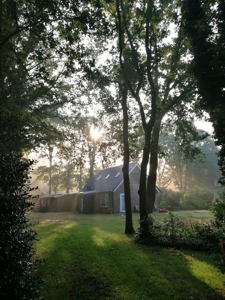 Vakantiehuis in de natuur naast de Lemelerberg