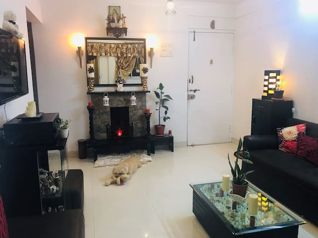 A Cozy Apartment in the heart of Bandra,