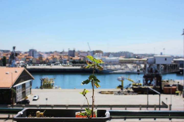 Flor de la Mar - Leça da Palmeira - Apartment