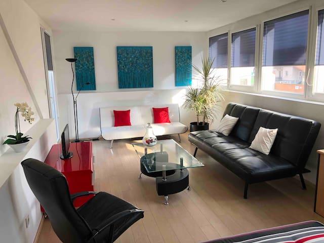 Appartement 2 pièces rénové, facile d'accès