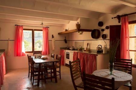 Es Refugi de Sollerich, studio house in mountains.