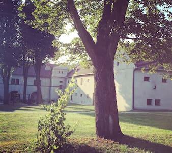 Średniowieczny Zamek Rycerski - Dzięgielów