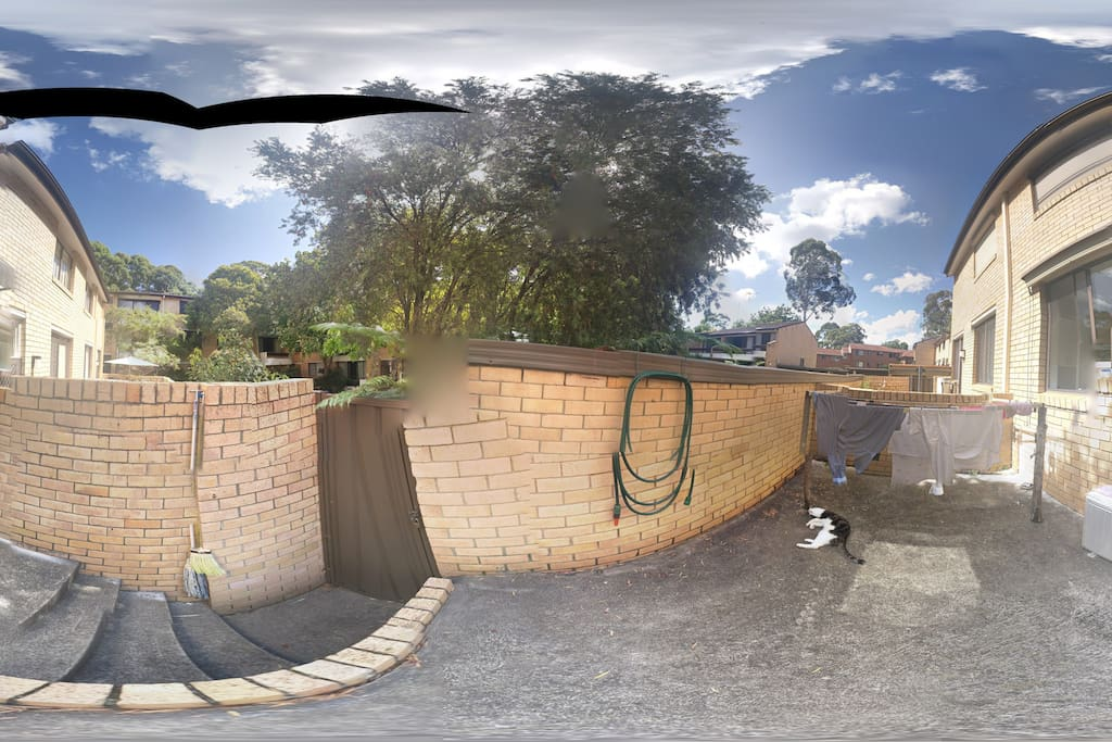 Back yard - 360 degree view