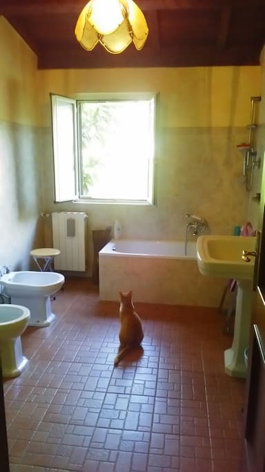 Bagno interno alla camera