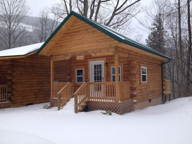 Little Cabin in the Woods - Hendersonville - Kabin