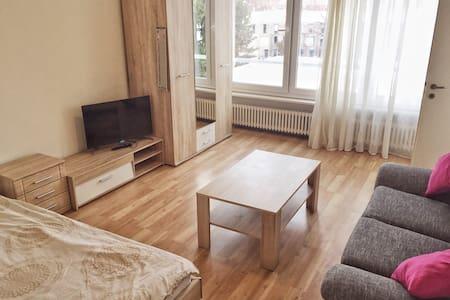 Apartment near Center - Bâle