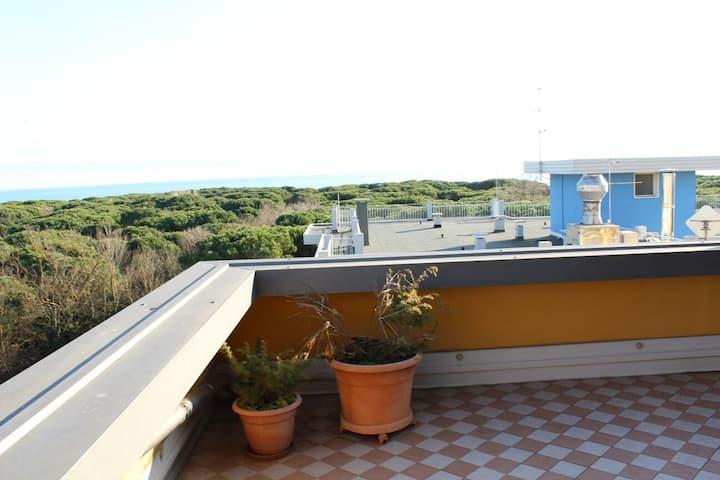 Top Floor Attic w/ Sea View