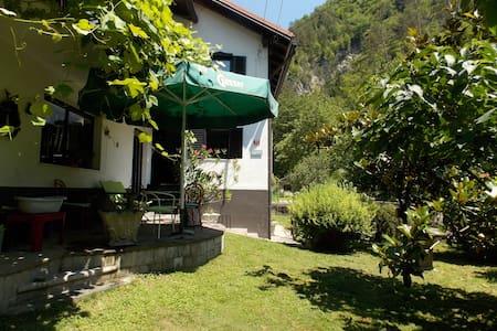 House by the creek, Tolmin - Poljubinj