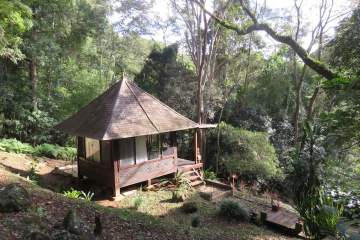 Forest Bale Glamping Byron Bay Hinterland