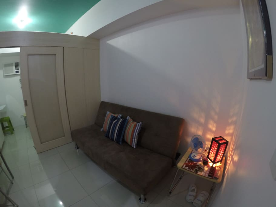 Living Area with sofabed