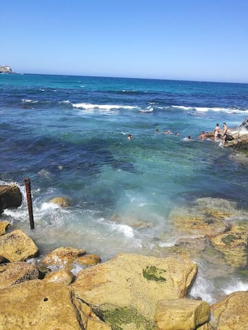 Beautiful Bronte