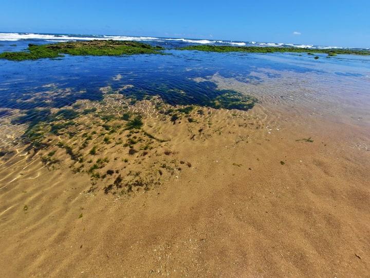 Ipitanga- Praias do litoral