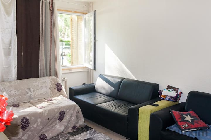 COSY FLAT IN ANNECY - Annecy - Byt