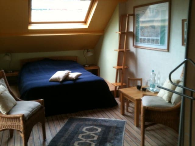 Spacious room in picturesque Vianen - Vianen