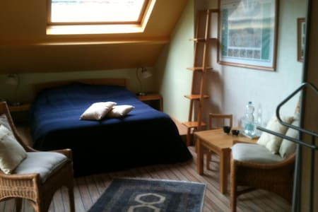 Spacious room in picturesque Vianen - Vianen - 独立屋