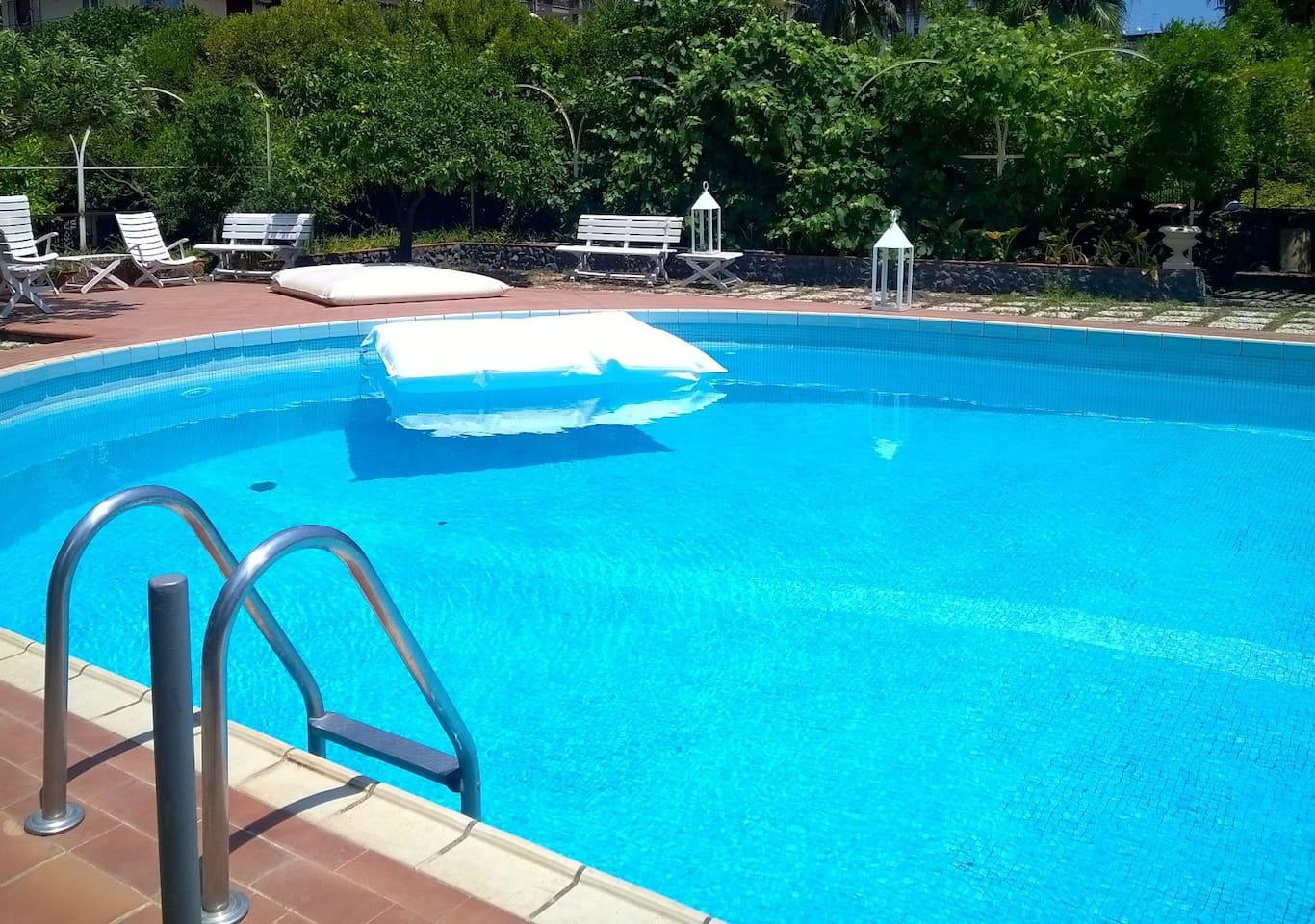 La piscina e i suoi accessori: zona relax con vegetazione lussureggiante.