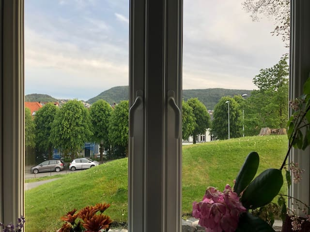 Apartment with a view in beautiful Nordnes