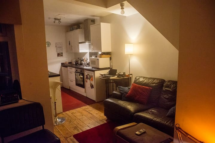 One Bedroom apartment very near to Bristol center.