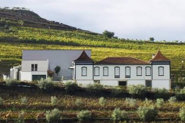 Casa de Cambres - Douro Valley