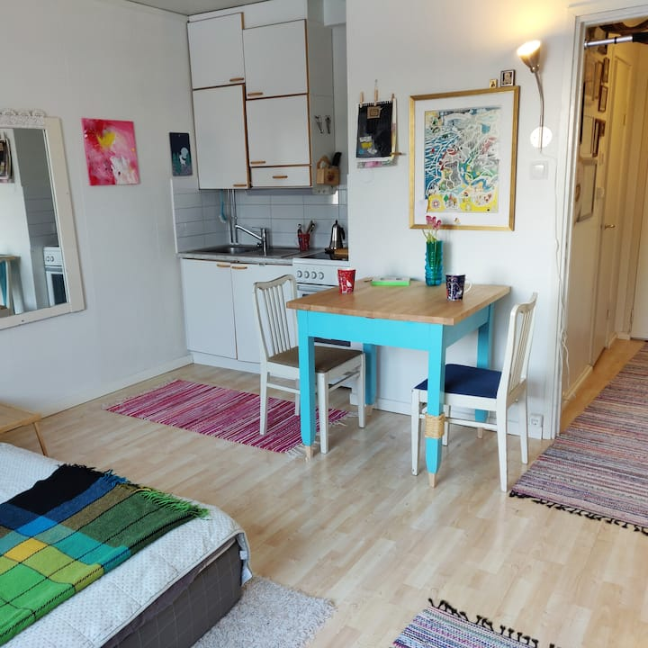 Cozy & functional little single room apartment