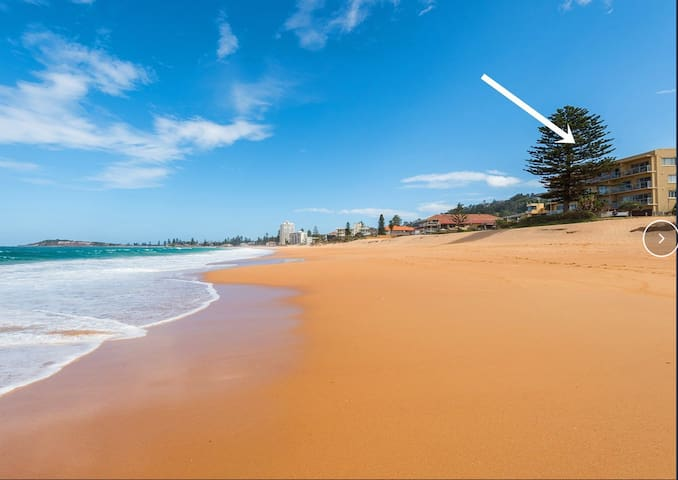 Beachfront Apartment on Narrabeen Beach near Manly