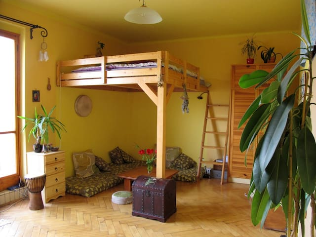 Flat with a Terrace on a Riverside - Prag - Daire