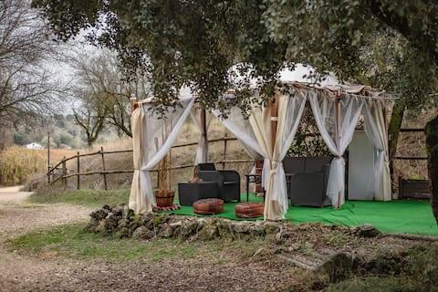 Rancho Aguadulce CABIN