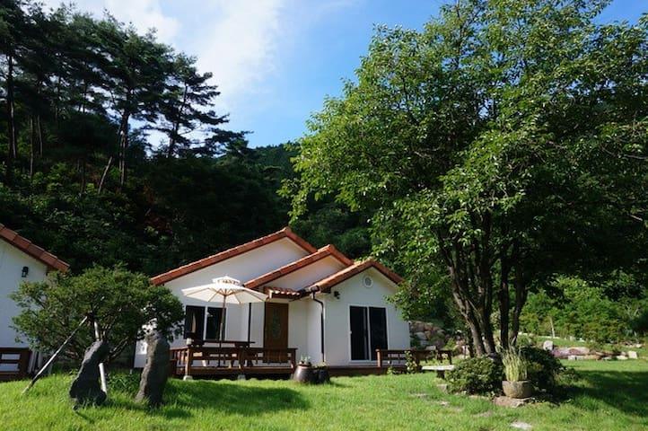 정원이 예쁜 장성 편백숲속 목조 독채펜션 온돌방