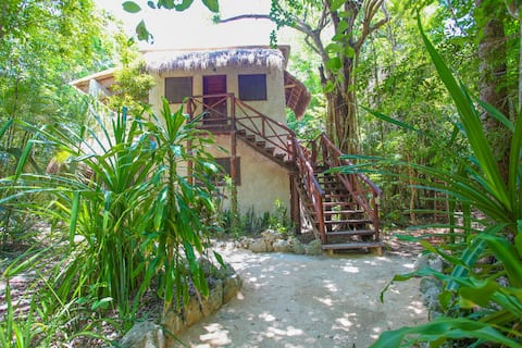 Comfortable Cabin in the Magic Jungle, Nicteha