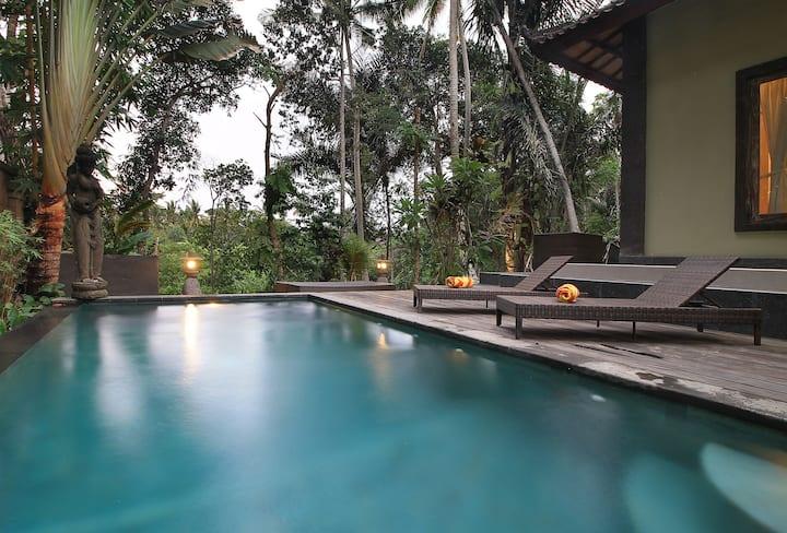 Peaceful Private villa jungle and river view
