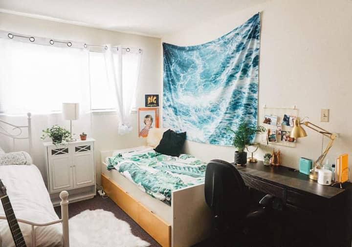 Ideally Located Berkeley Single