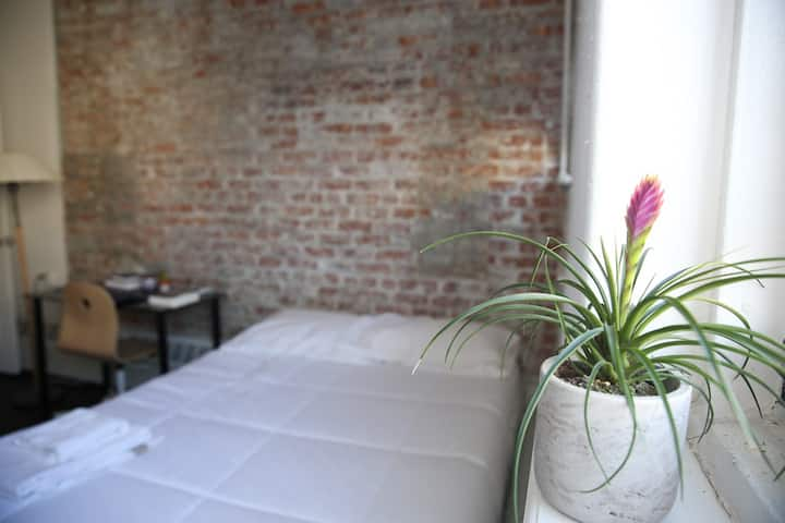Great Room  Great Location Williamsburg