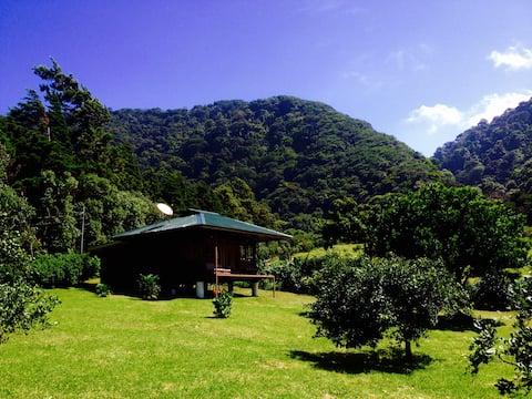Lemon House Monteverde