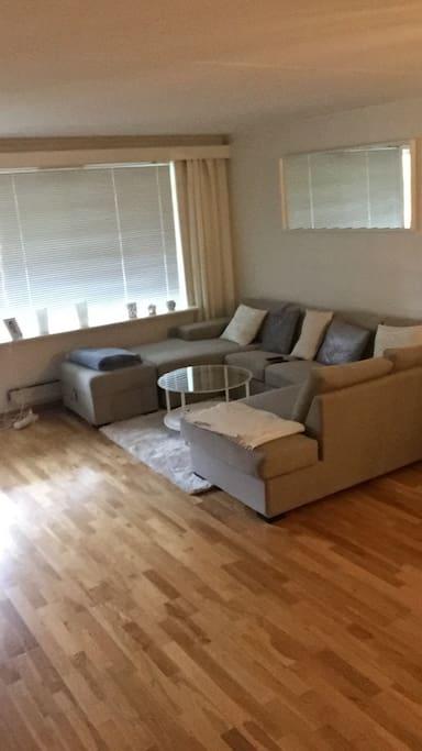 Stor stue med behagelig sofa