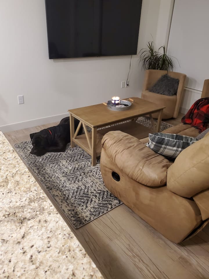 Entire downtown apartment