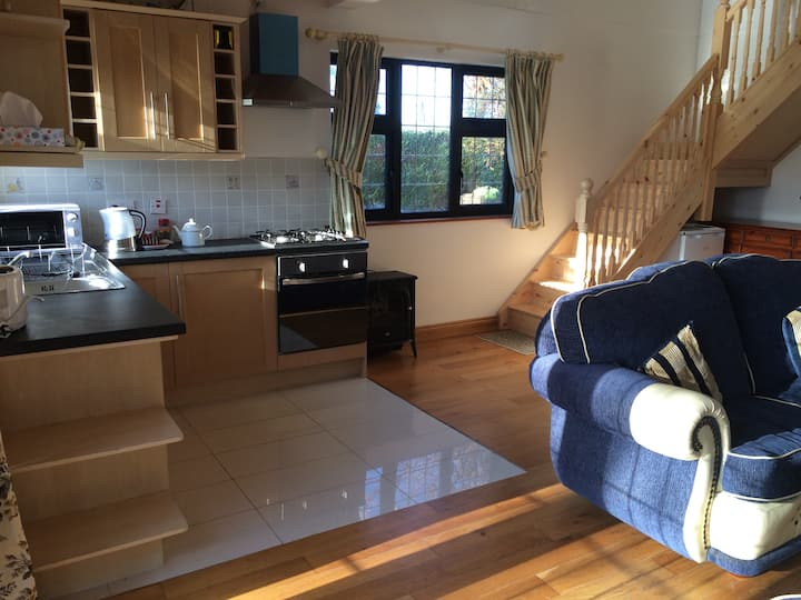 Self-catered apartment situated in Longford Town