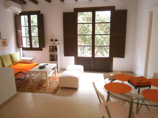 Historic Center Apartment in Palma - Palma