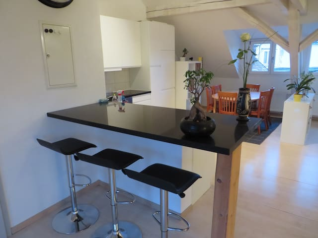 Dachwohnung am Rhein (BS) - Bazel - Appartement