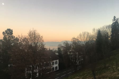 Penthouse, lake & mountains views - Thalwil - Apartemen