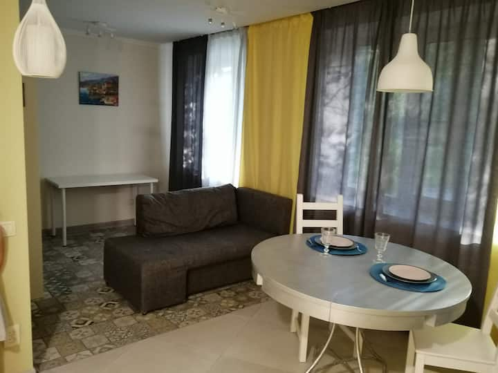 Apartment in the center of Peterhof