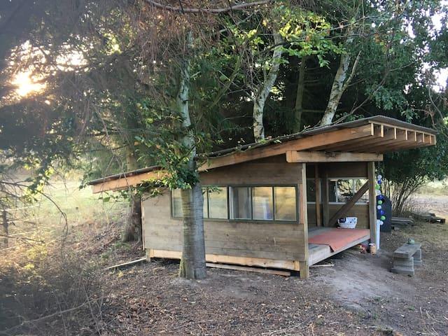Big shelter in beautiful surroundings