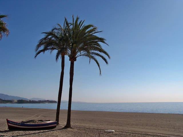 Spectacular beachfront apartment