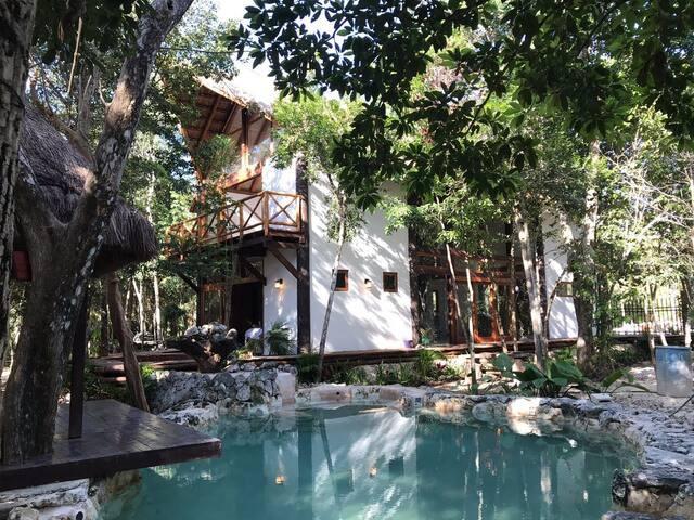 A unique house in the jungle, near Tulum